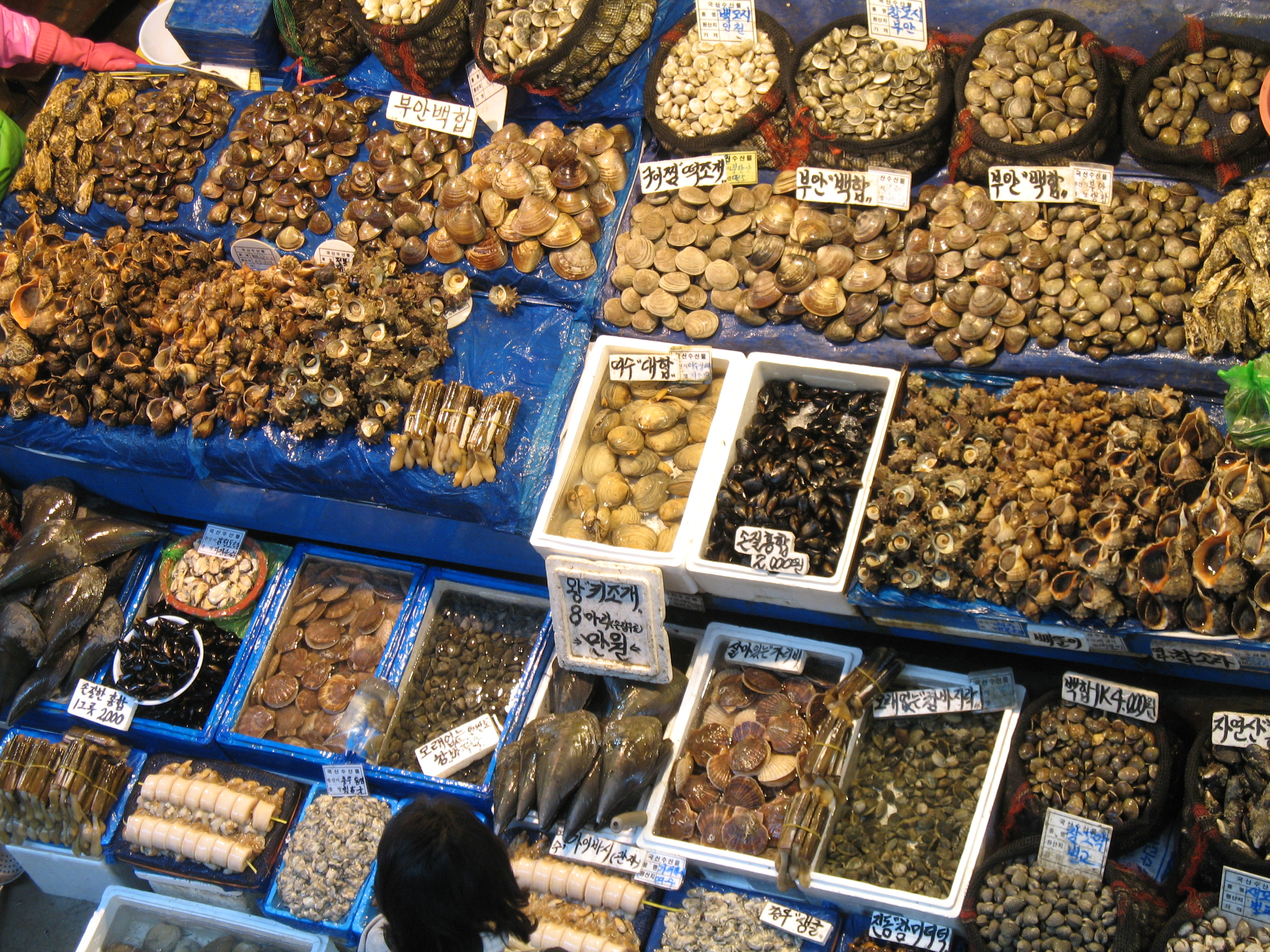 Seoul delicious 25 mouth watering foods in seoul trip101 for Seafood fish market