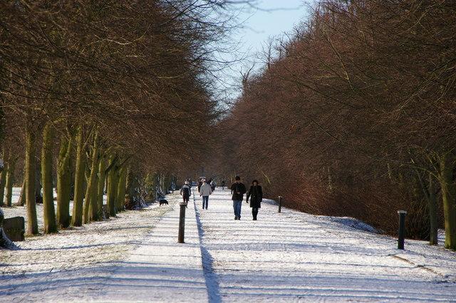 File:Main Driveway, Trent Park, London N14 - geograph.org.uk - 1631140.jpg