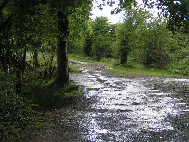 National Cycle Route 27 near Chub Tor, Yelverton - geograph.org.uk - 1349008