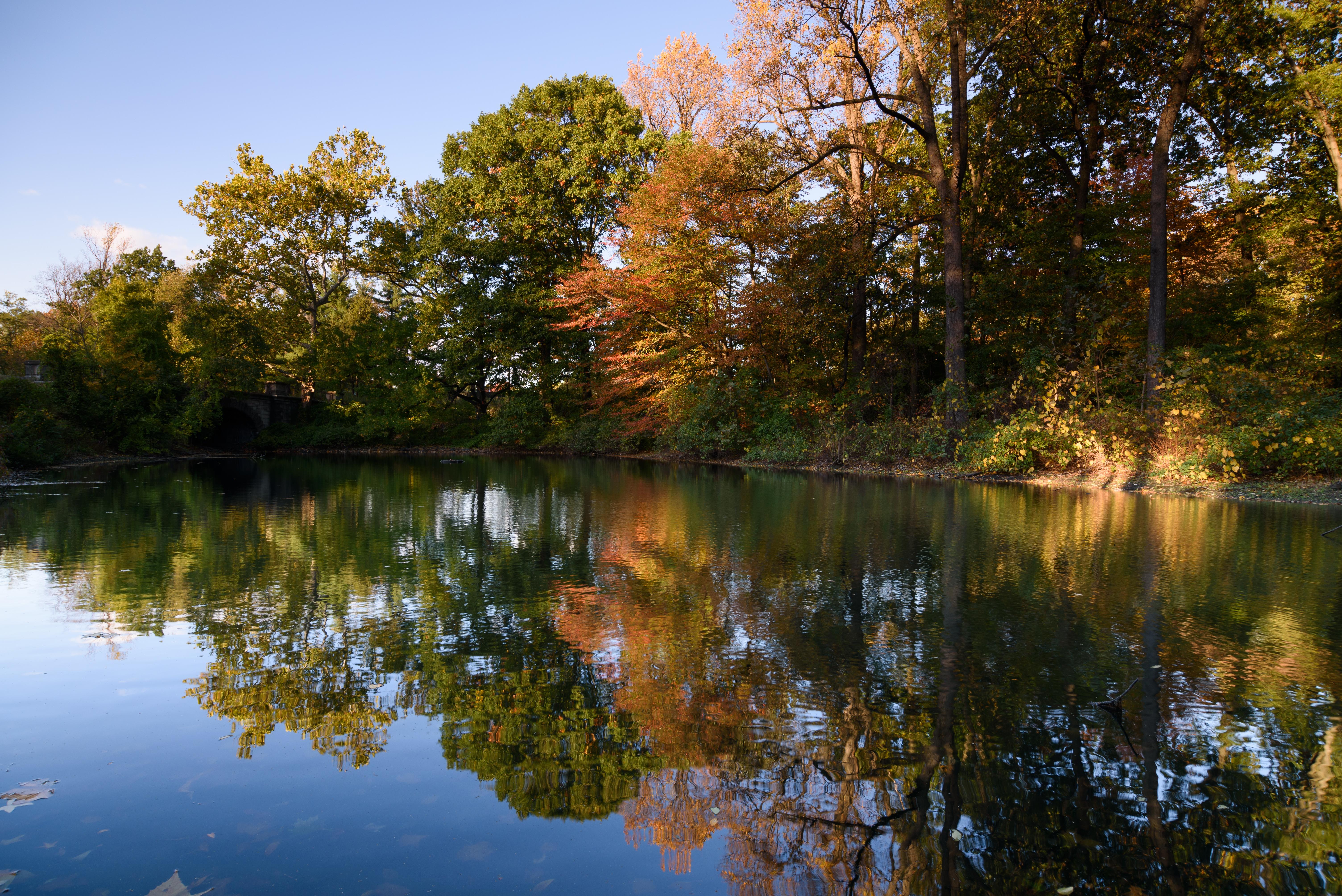 File:New York Botanical Garden October 2016 013.jpg - Wikimedia Commons