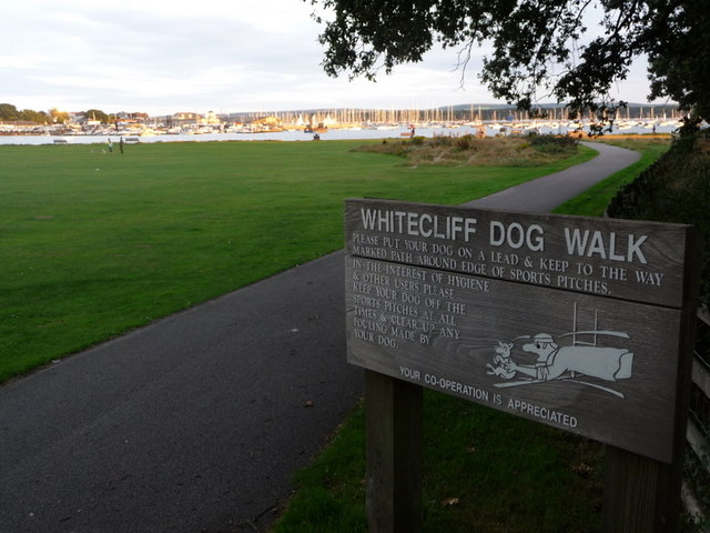 Poole, Whitecliff Park - geograph.org.uk - 1430405