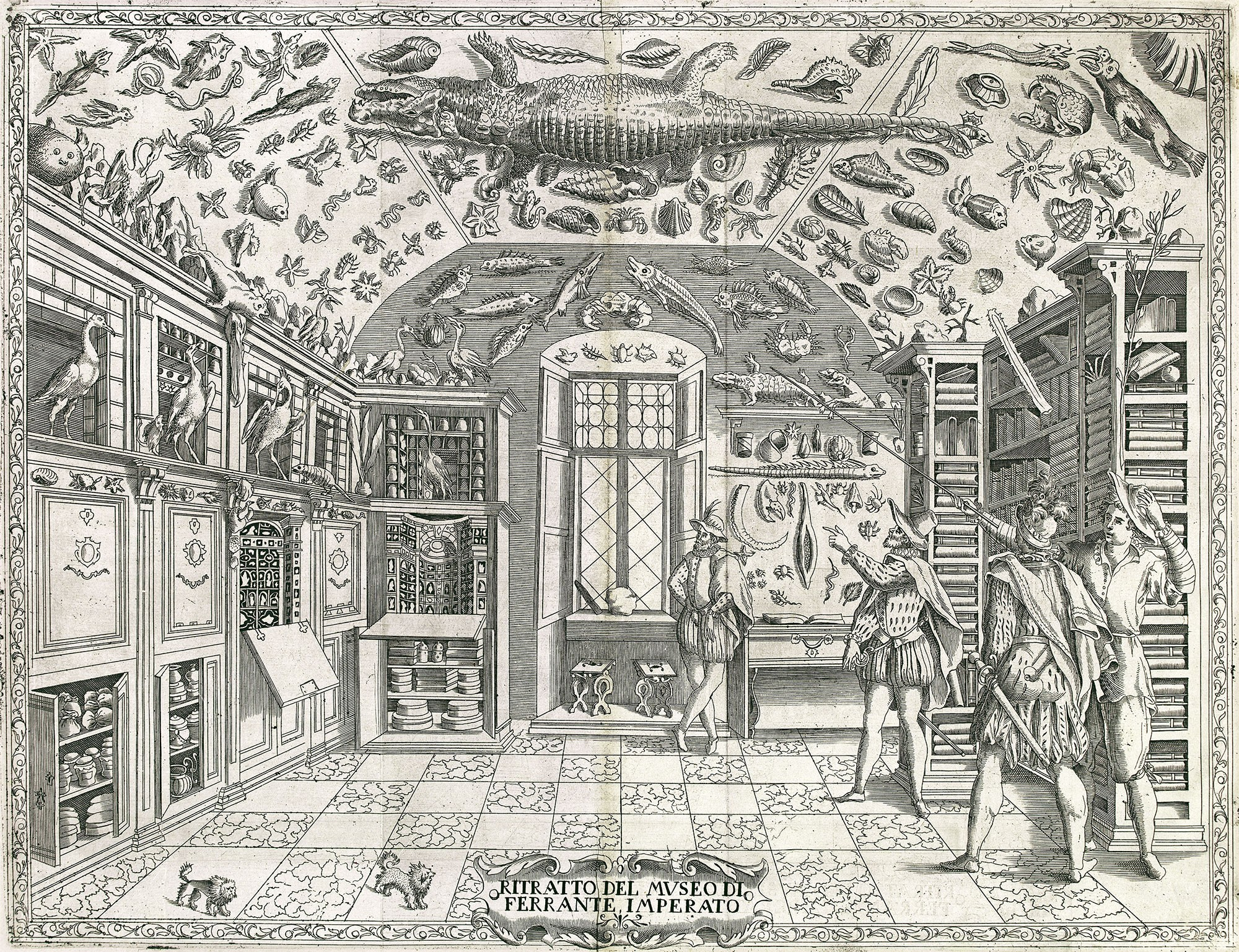 Fold-out engraving from Ferrante Imperato's Dell'Historia Naturale (Naples 1599), the earliest illustration of a natural history cabinet