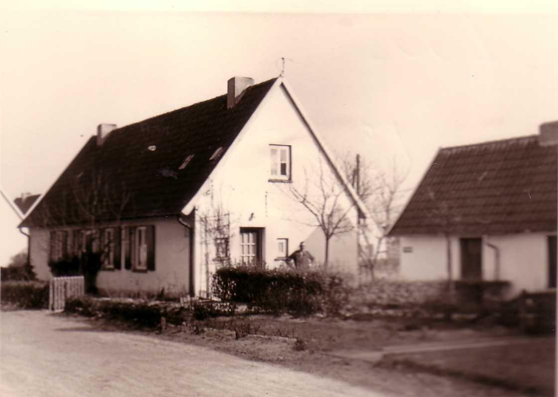 Siedlungshaus Wikipedia