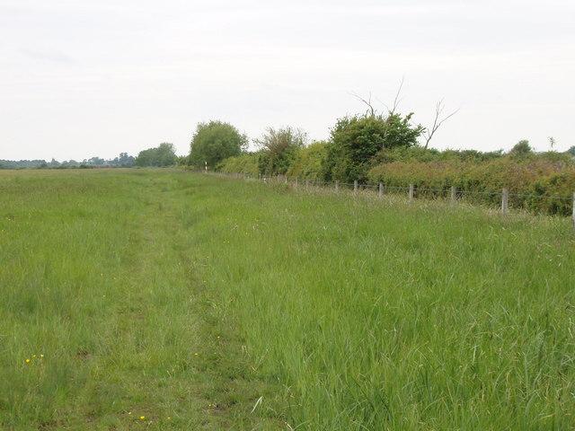 Track across Otmoor - geograph.org.uk - 180606