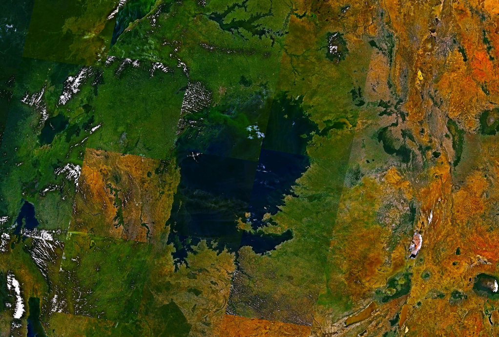 Danau Victoria merupakan danau terbesar ketiga di dunia