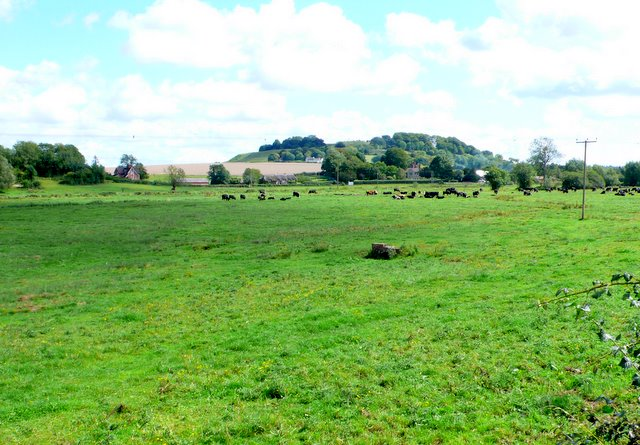 Lower Woodford Water Meadows