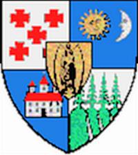 Fișier:Actual Harghita county CoA.png