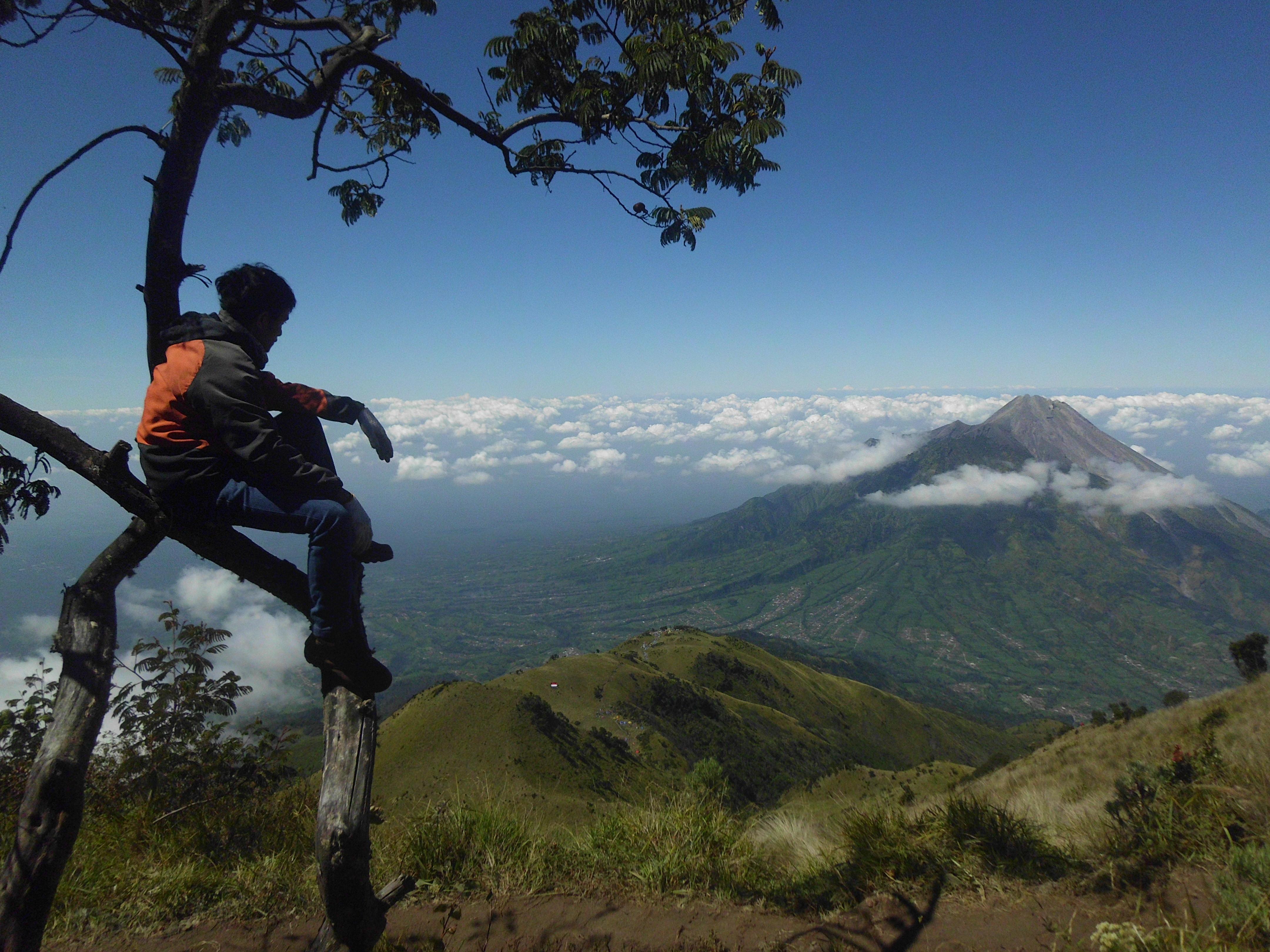 Image Result For Gunung Merbabu