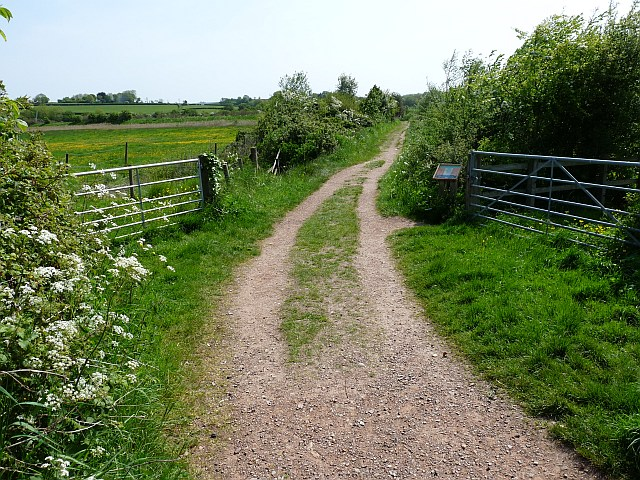 Bowling Green Marsh Nature Reserve (1) - geograph.org.uk - 1312599
