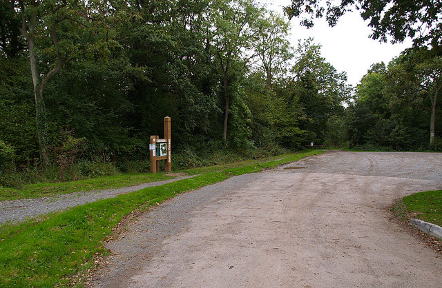 Car Park on Swan's Way, Salcey Forest - geograph.org.uk - 253561