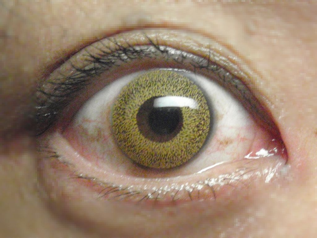 color contact: