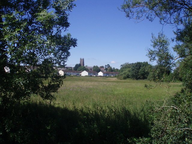 File:Cullompton , Countryside looking toward St Andrew's Church - geograph.org.uk - 1217350.jpg