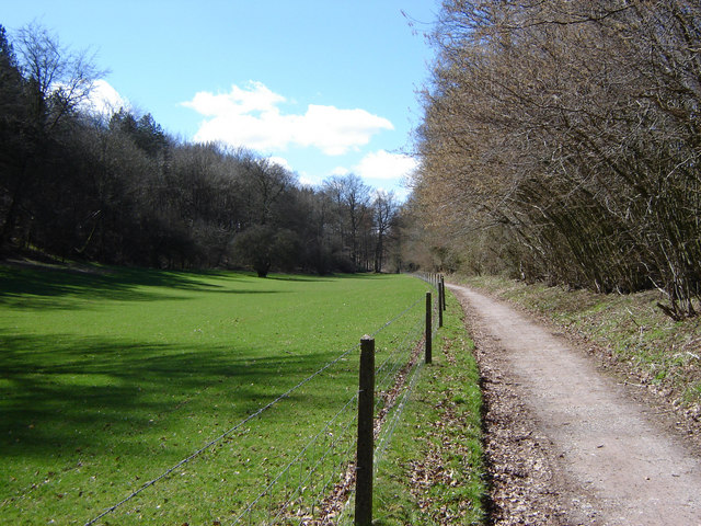 Cycle path near Chawton Park Woods - geograph.org.uk - 148384