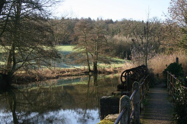 Fiddleford Mill Pond - geograph.org.uk - 378949