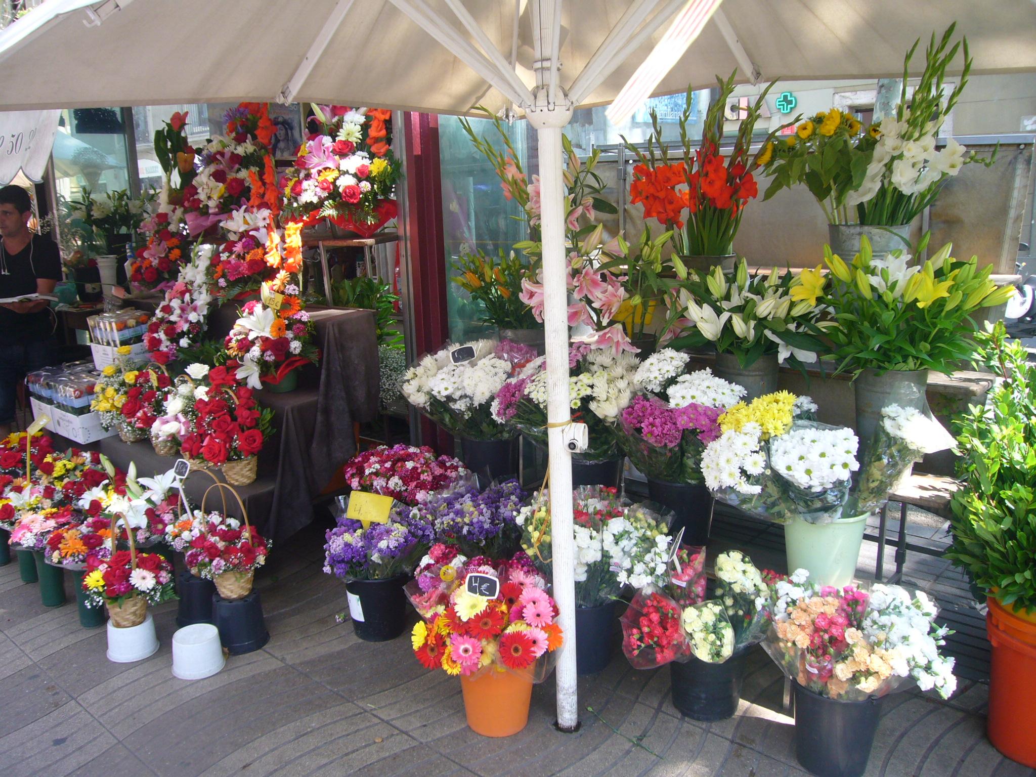 File Flower shop La Rambla JPG Wikimedia mons