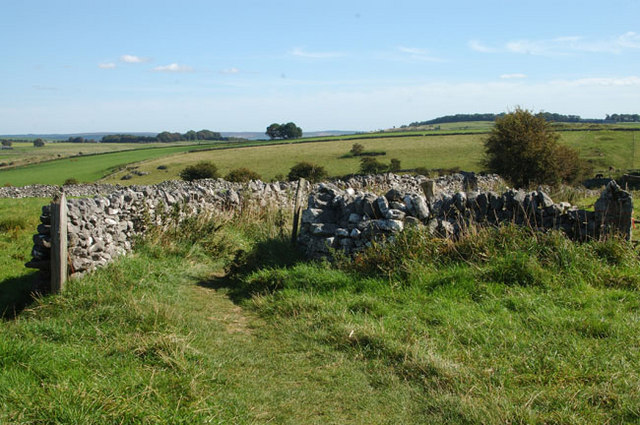 Footpath at Fern Dale - geograph.org.uk - 1543175