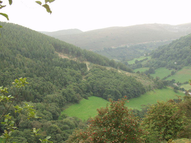 Forestry at Tan-y-bwlch - geograph.org.uk - 237720
