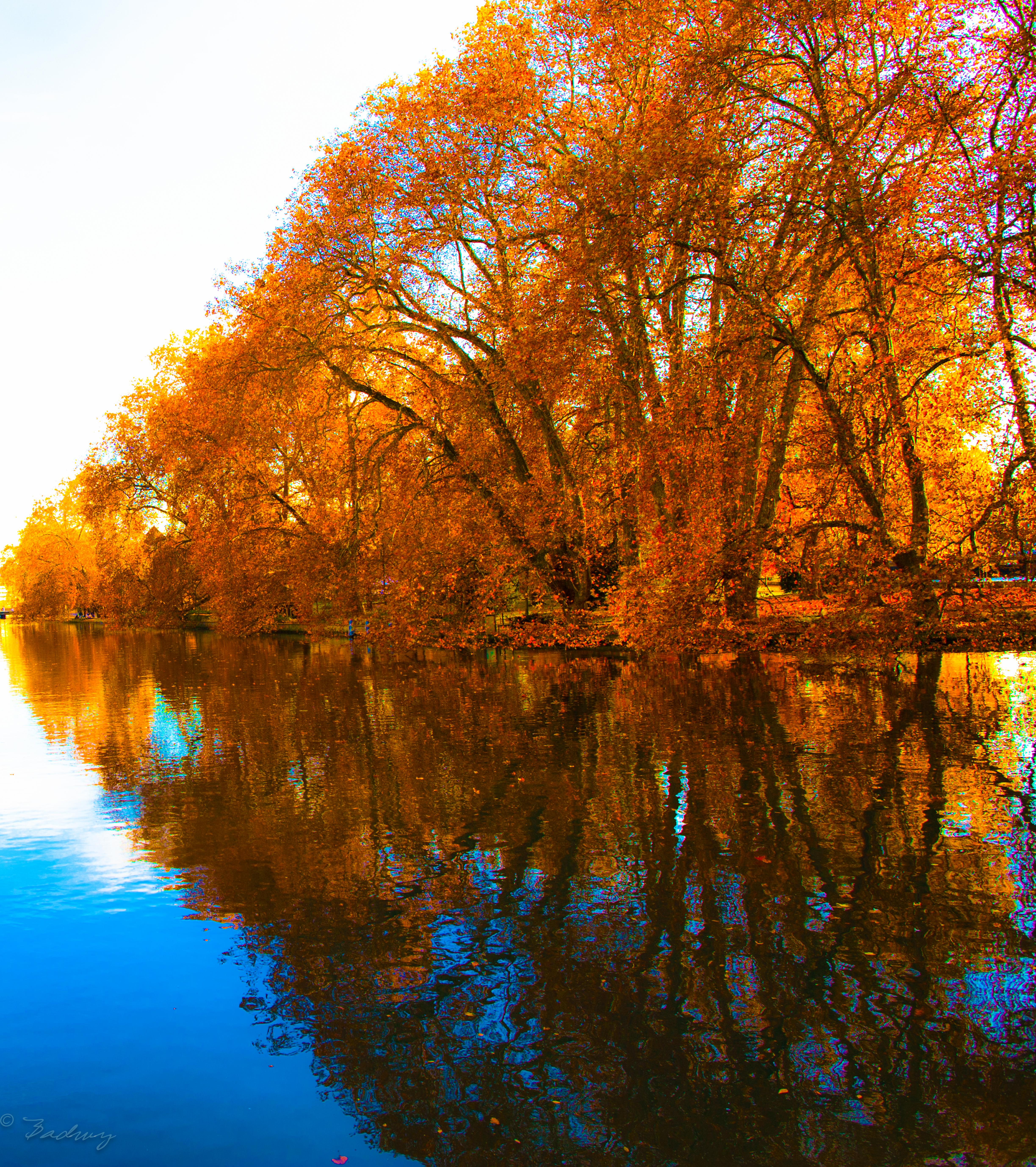 File:Golden Time , Zurich 4 November 2010 - panoramio jpg