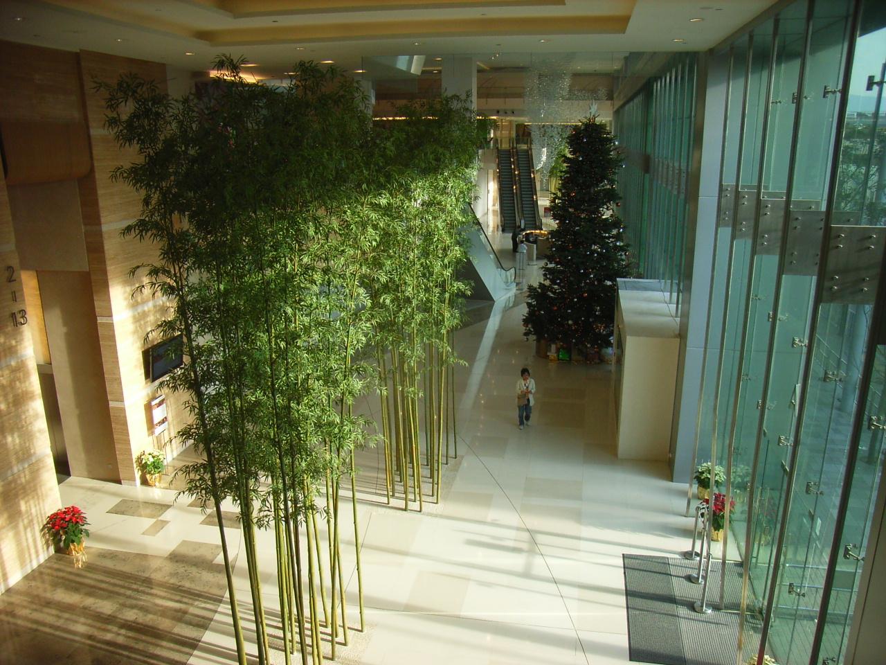 File:HK Kwun Tong 223 Lobby hall 01 indoor trees.JPG ...