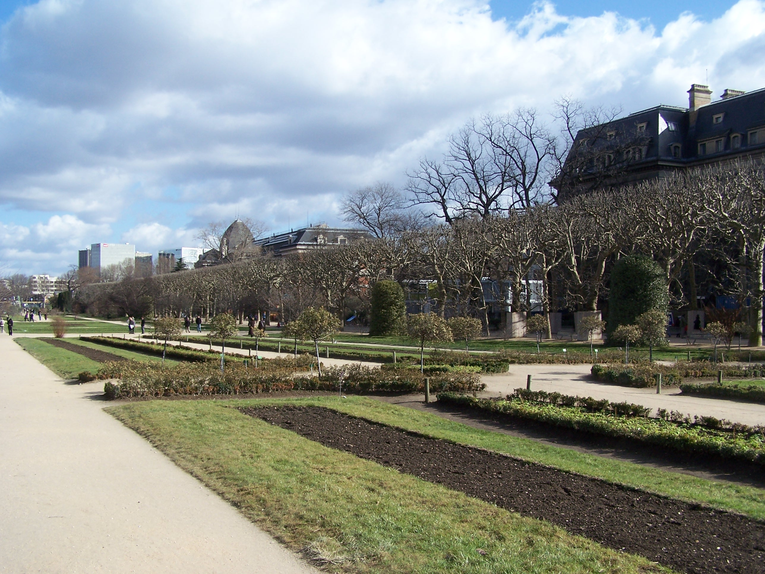 File:Jardin des Plantes vue hiver 2012.JPG - Wikimedia Commons