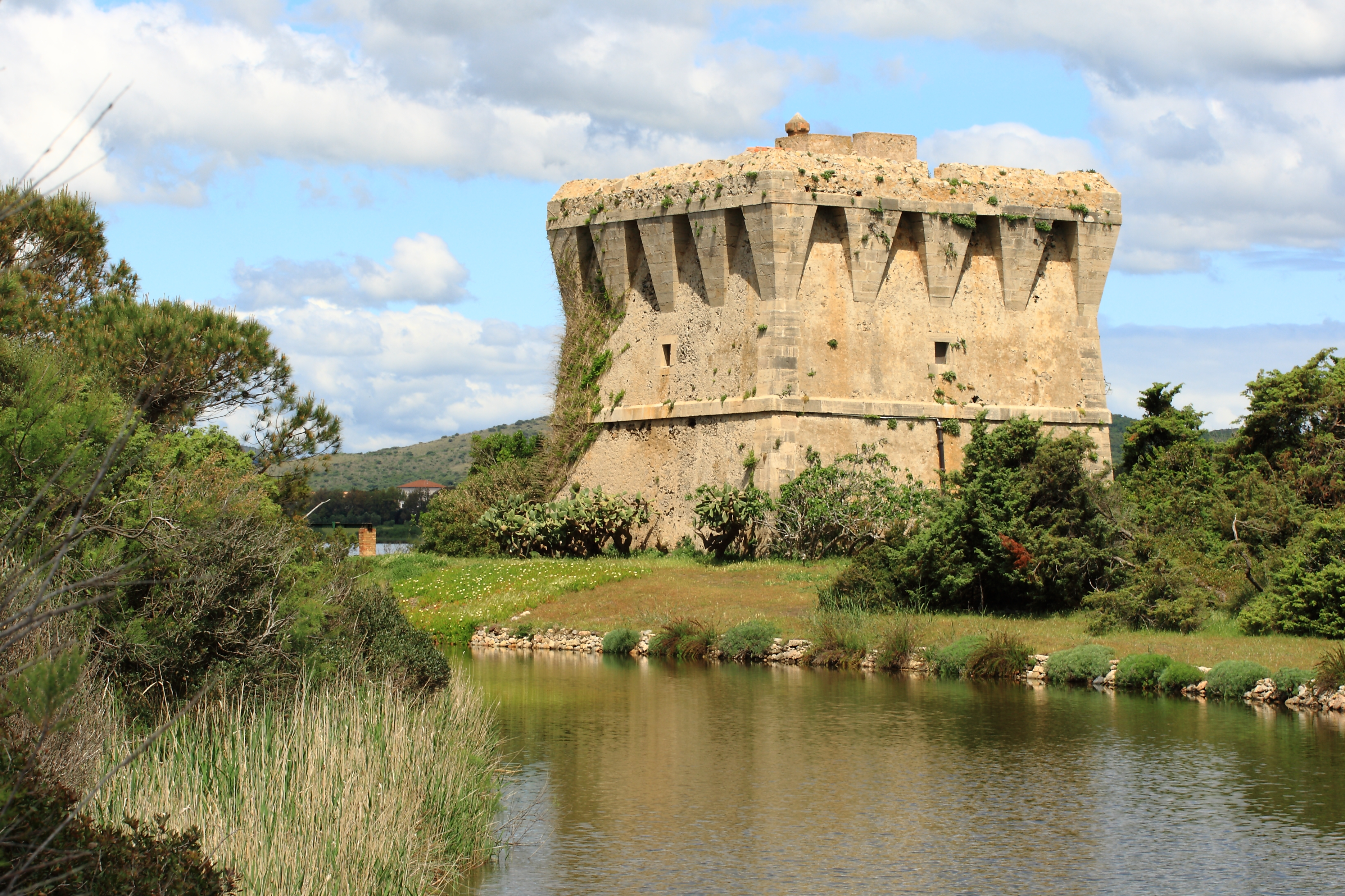 La Torre di Buranaccio.JPG