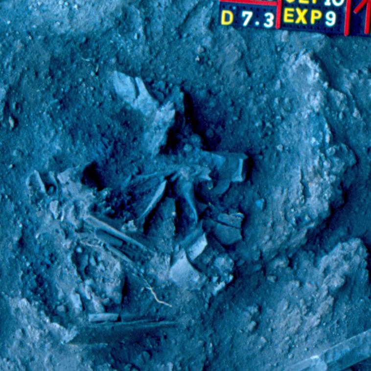 Santo. O sepultamento 10 é composto pelos ossos de um único indivíduo adulto do sexo feminino. A cova tem cerca de 40 centímetros de diâmetro e apresenta