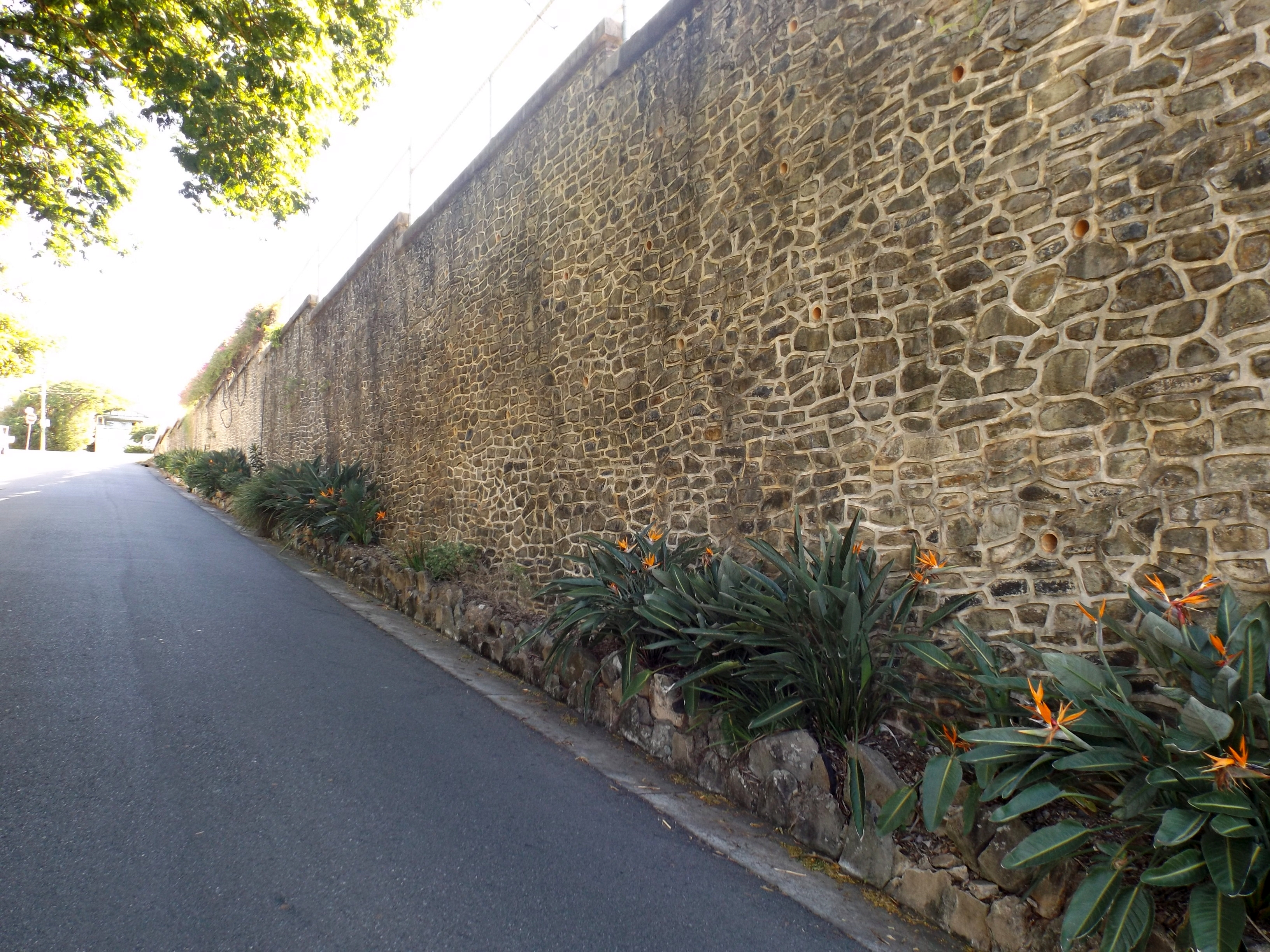Manly Retaining Wall   Wikiwand