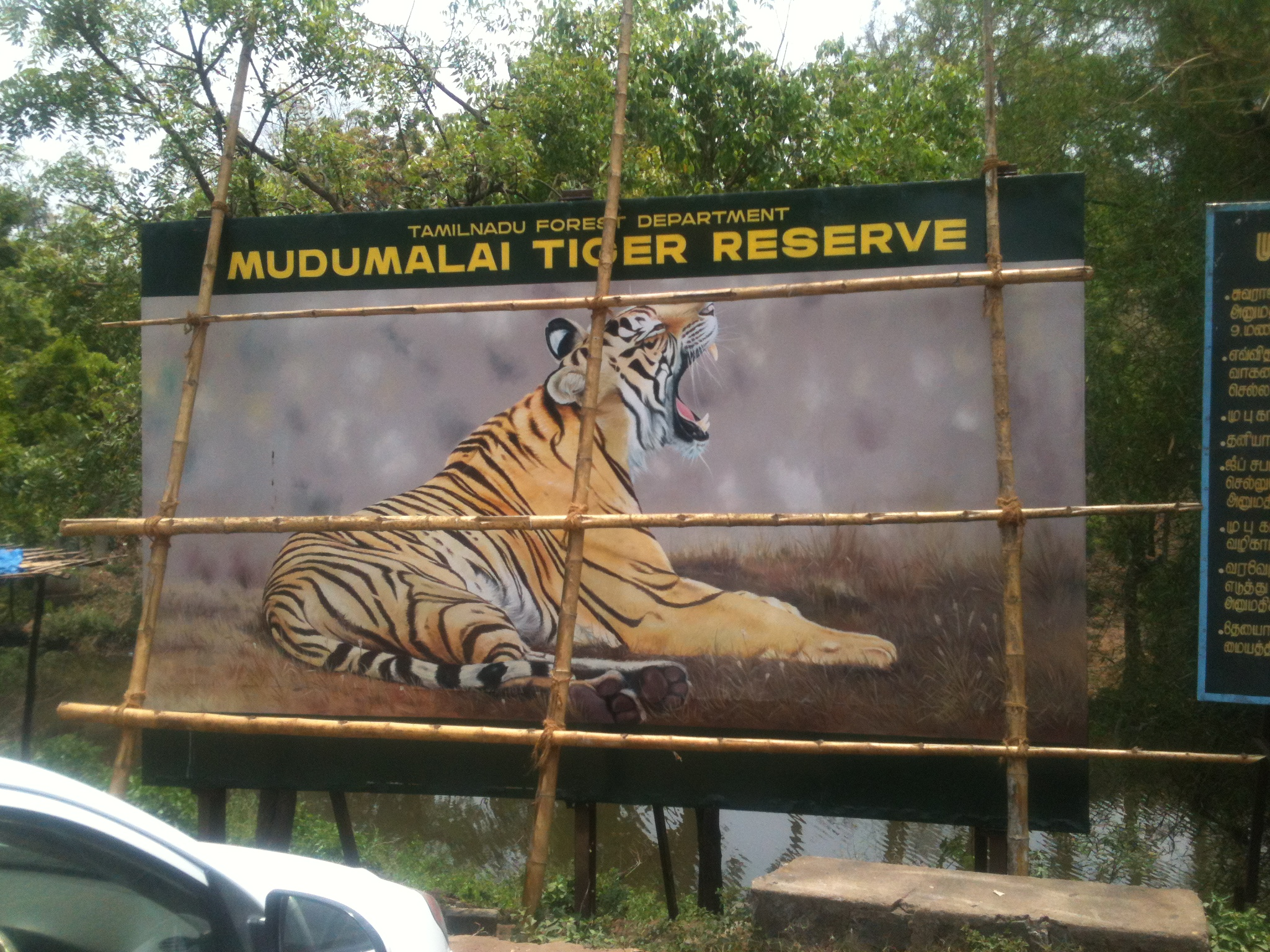 Mudumalai tiger reserve entrance