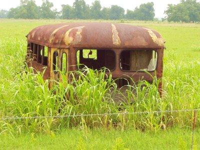 rusting schoolbus in an Oklahoma field