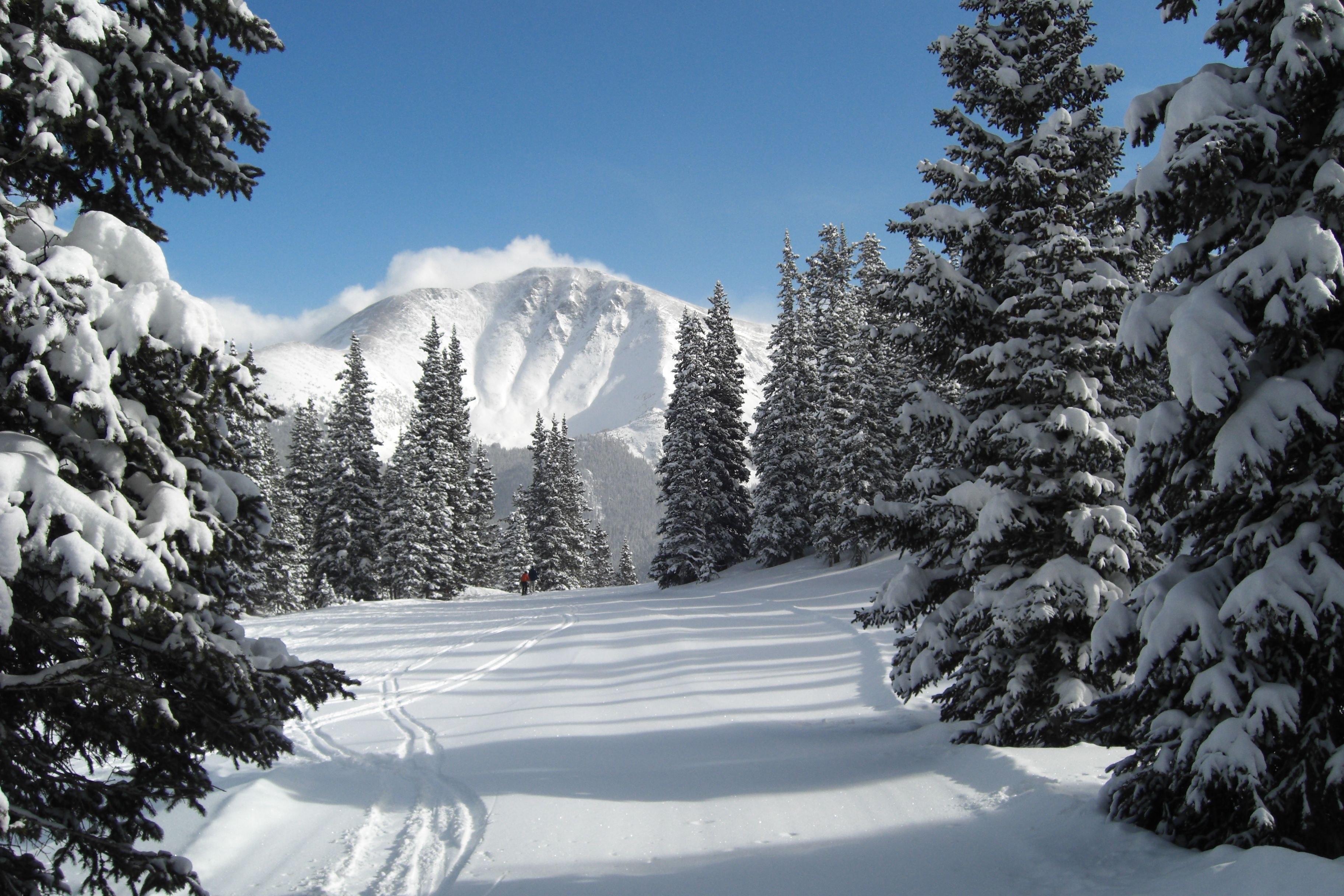 winter park dating Not only are there enough activities to keep you and your family content within the winter park city limits, but all the orlando attractions are just minutes away.