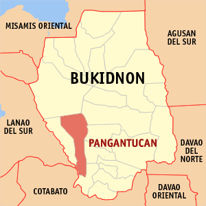 Map of Bukidnon showing the location of Pangantucan