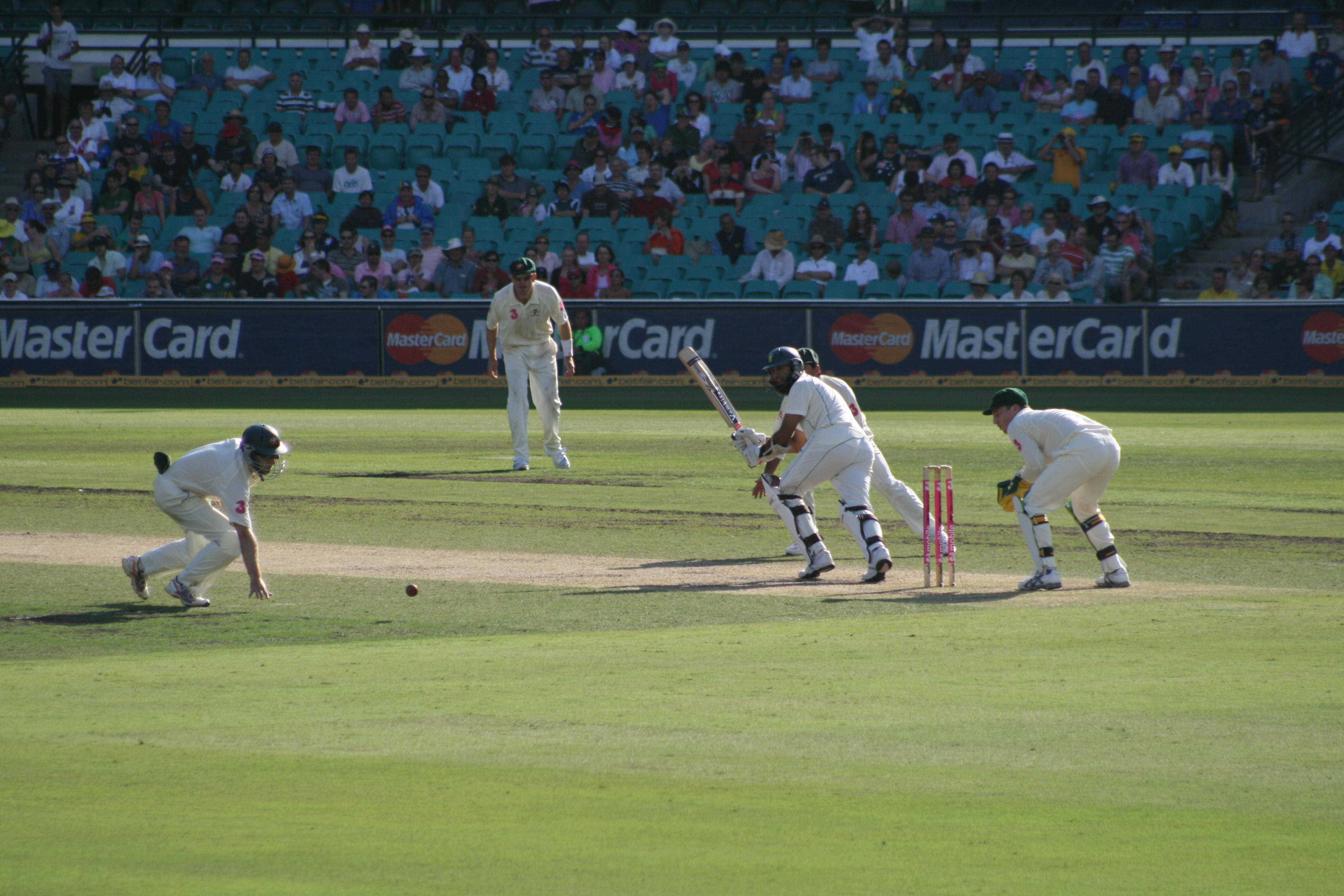 cricket - photo #23