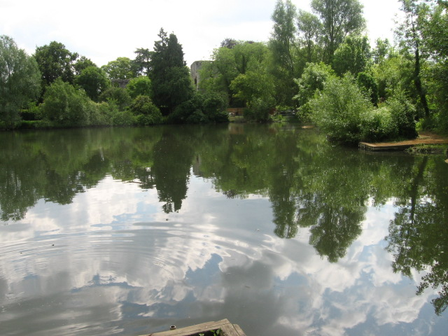 Pond near Bishop's Waltham Palace - geograph.org.uk - 1358925