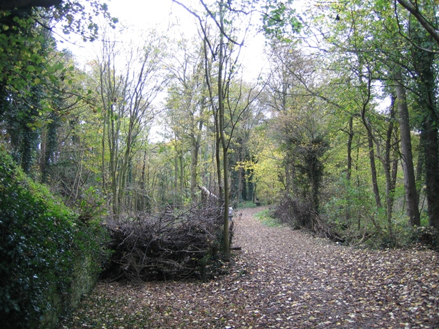 Public footpath and mill dam in Hawarden Park - geograph.org.uk - 628802