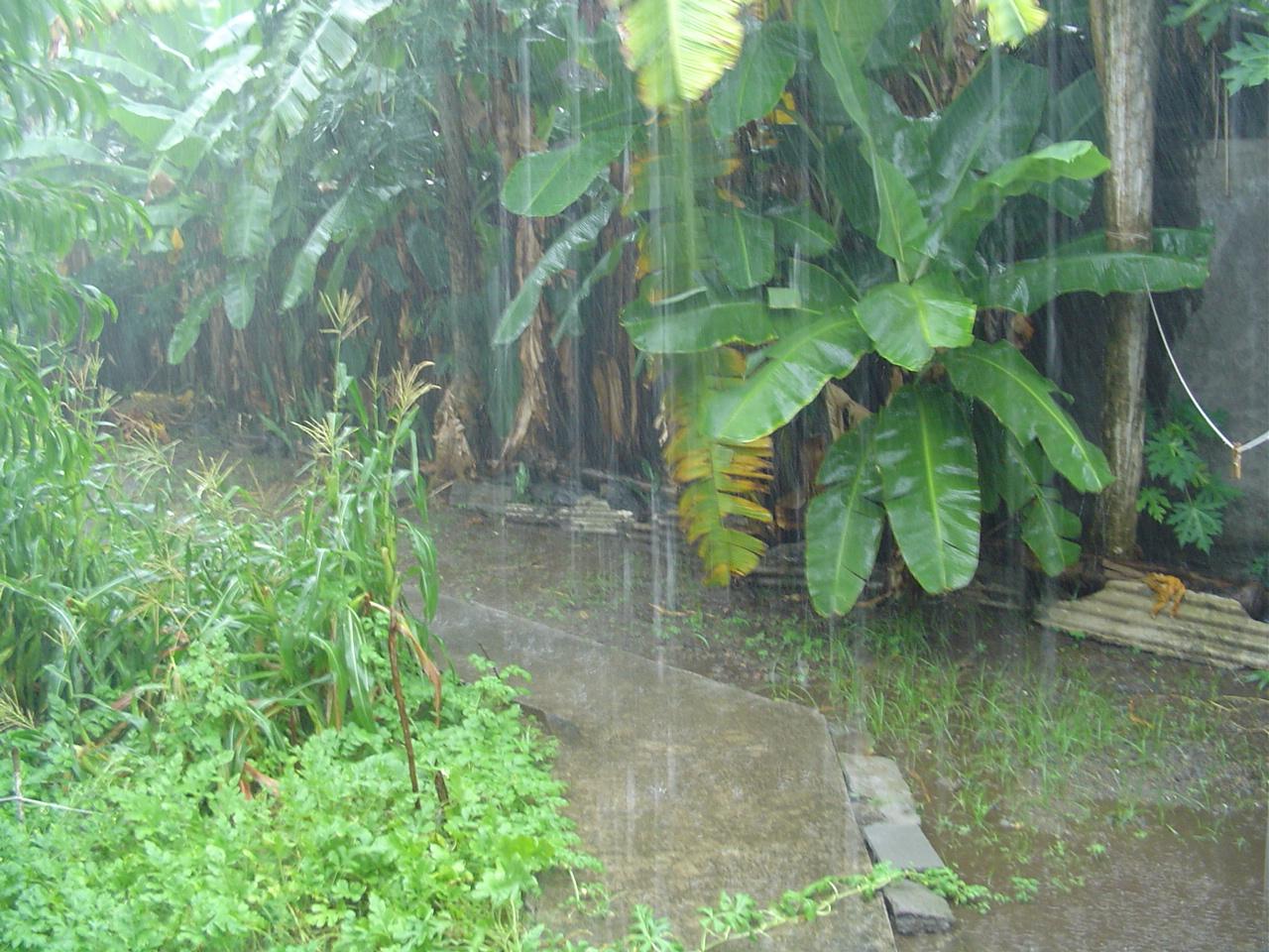 UHORAHO YARAYE AREKUYE IMVURA Y'IGIHUNGURABAYI HENSHI MU GIHUGU... Rain_season_in_Mayotte