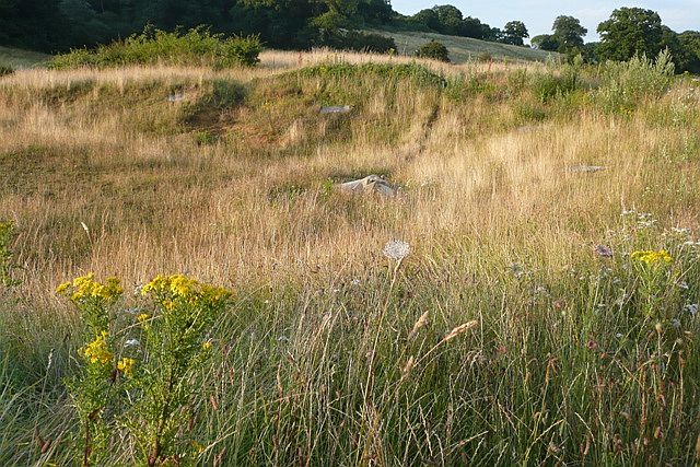 File:Rough going near Pincent's Lane - geograph.org.uk - 883396.jpg