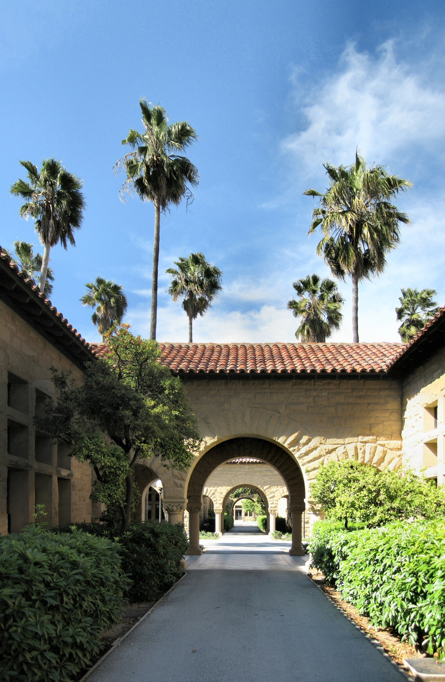 http://upload.wikimedia.org/wikipedia/commons/f/f4/Stanford_University_Walkway_Panorama.jpg