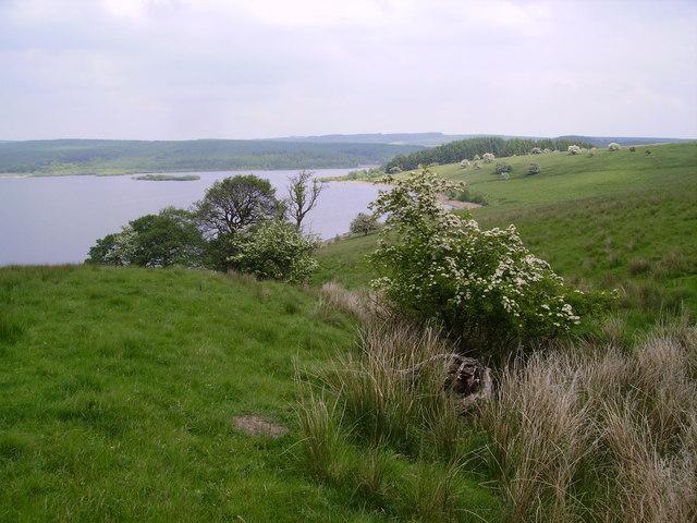Stocks Reservoir - geograph.org.uk - 184504
