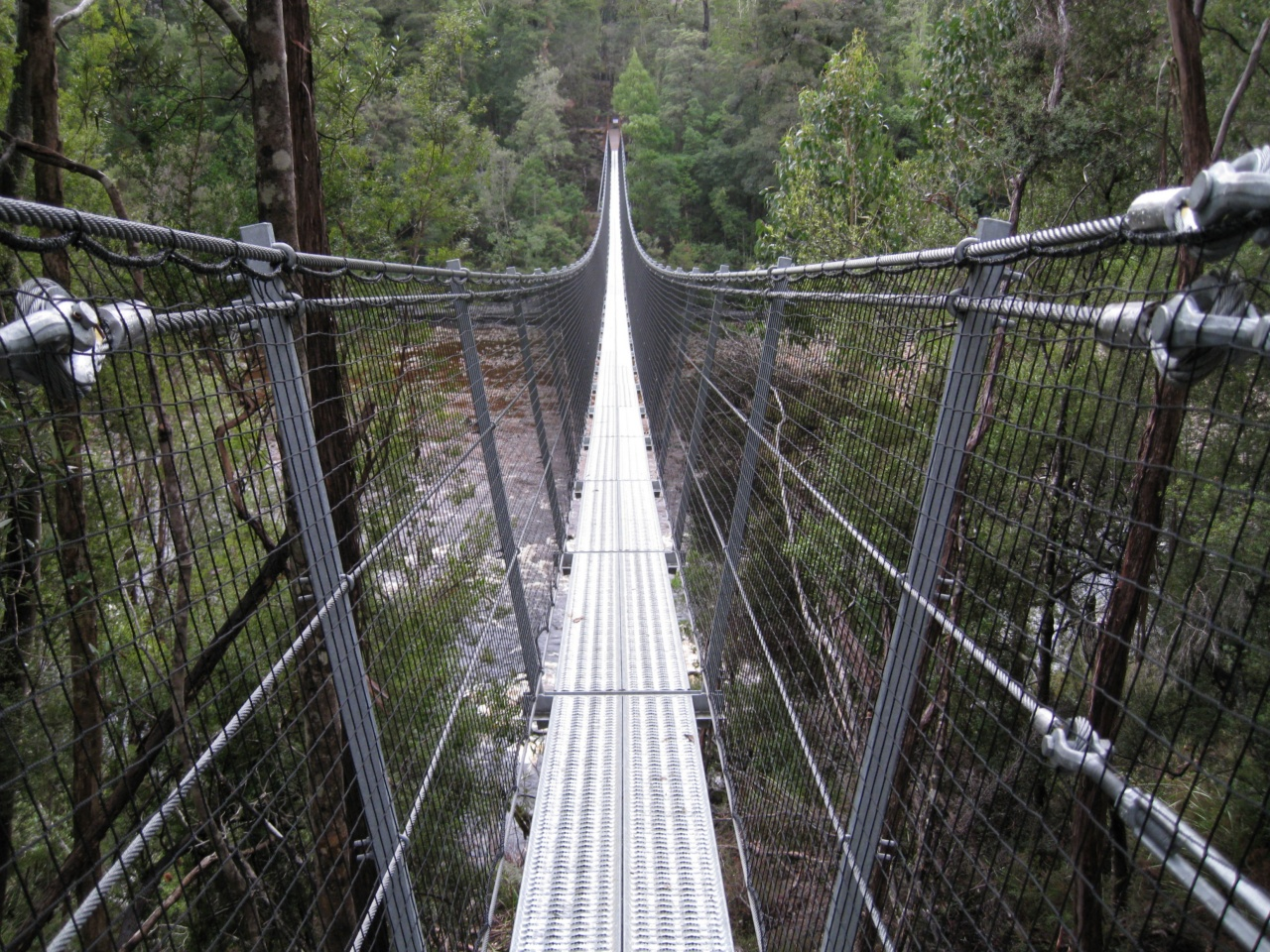 Suspension-Bridge-Huon-River-2008.jpg