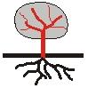 Symbol Phanerophyt.jpg