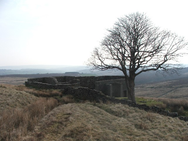 Top Withens House - geograph.org.uk - 393421