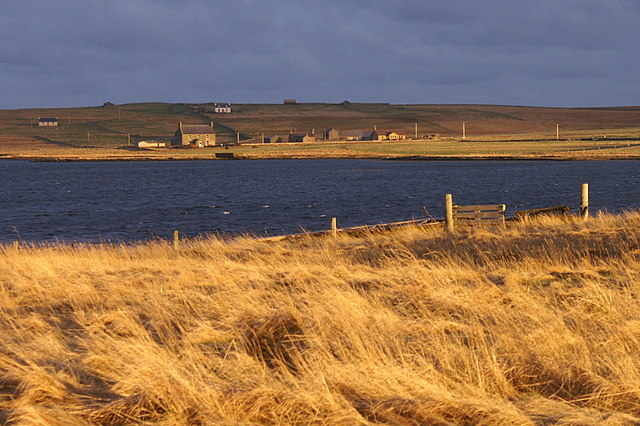 File:Transitory golden light, Baltasound - geograph.org.uk - 1190520.jpg