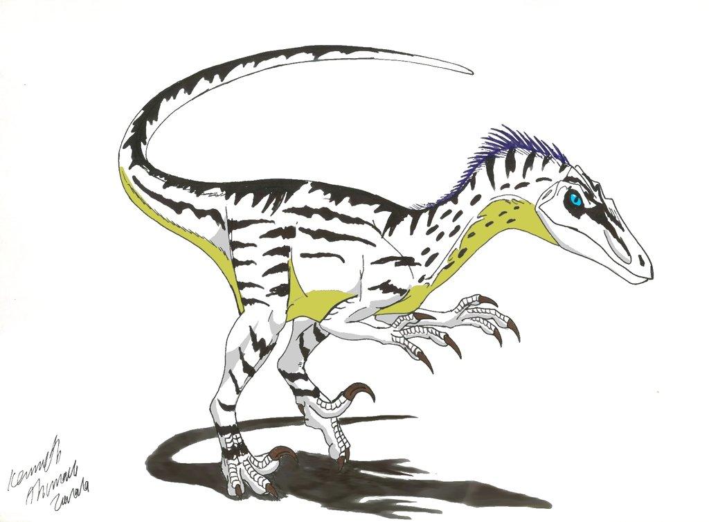Velociraptor asesores