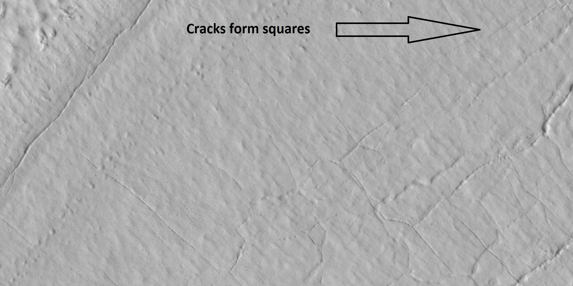 Cracks and pits that form square shapes Arrow points to squares formed by cracks.