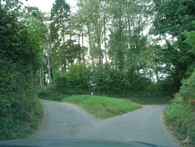A fork in the road - geograph.org.uk - 558151