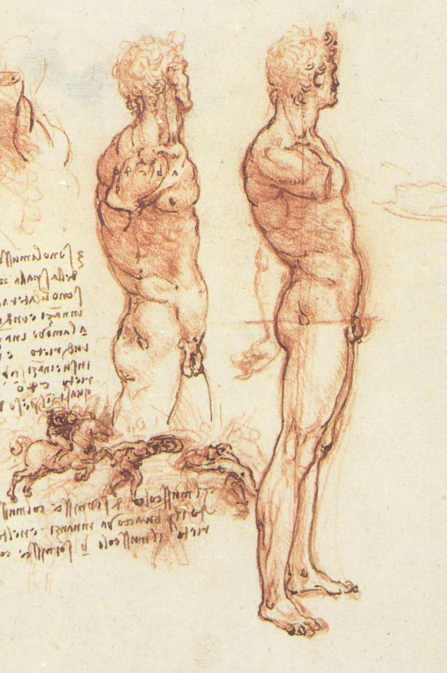 Figure drawing - Wikipedia