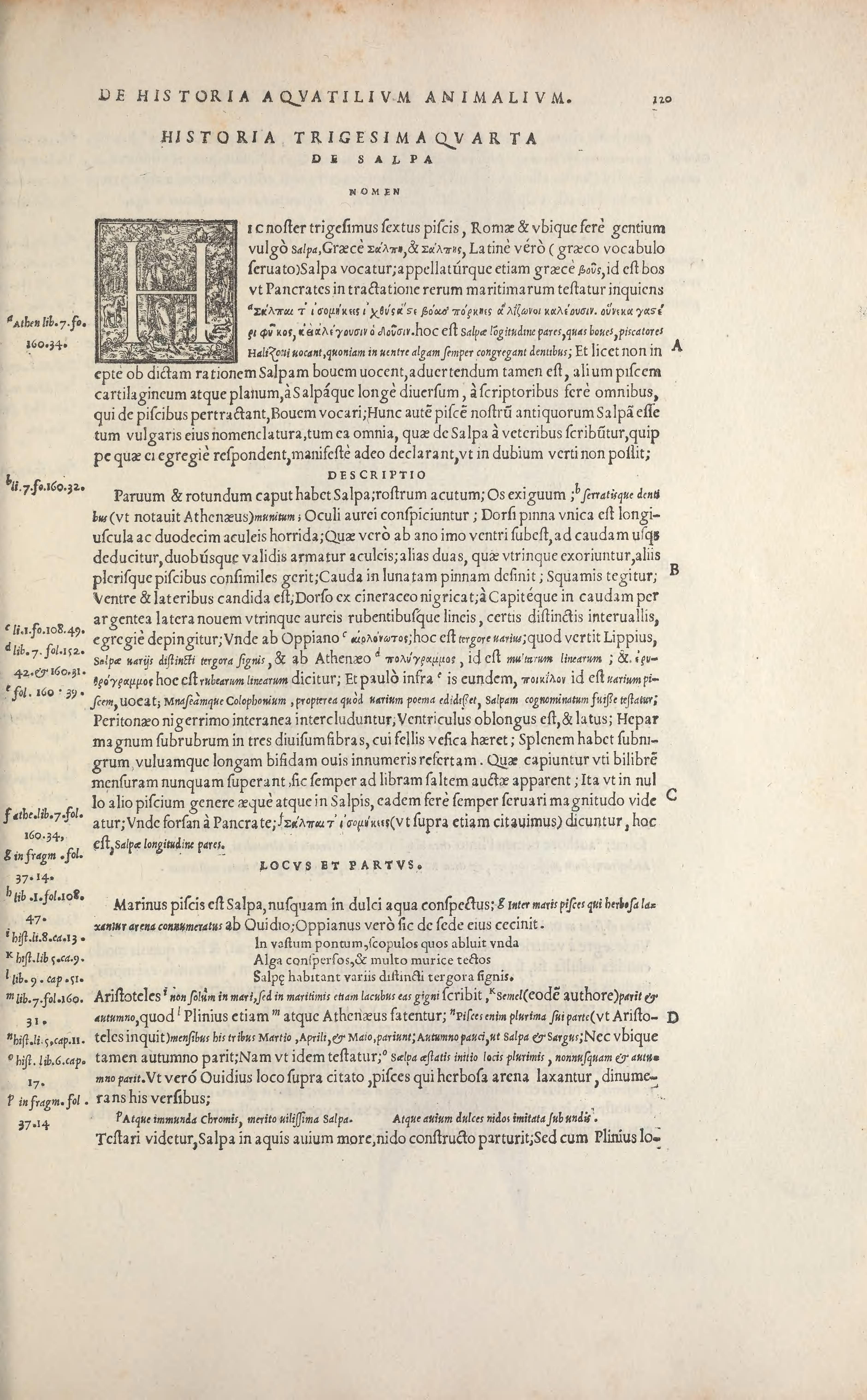 File:Aquatilium animalium historiae, liber primus (Page 120 ...