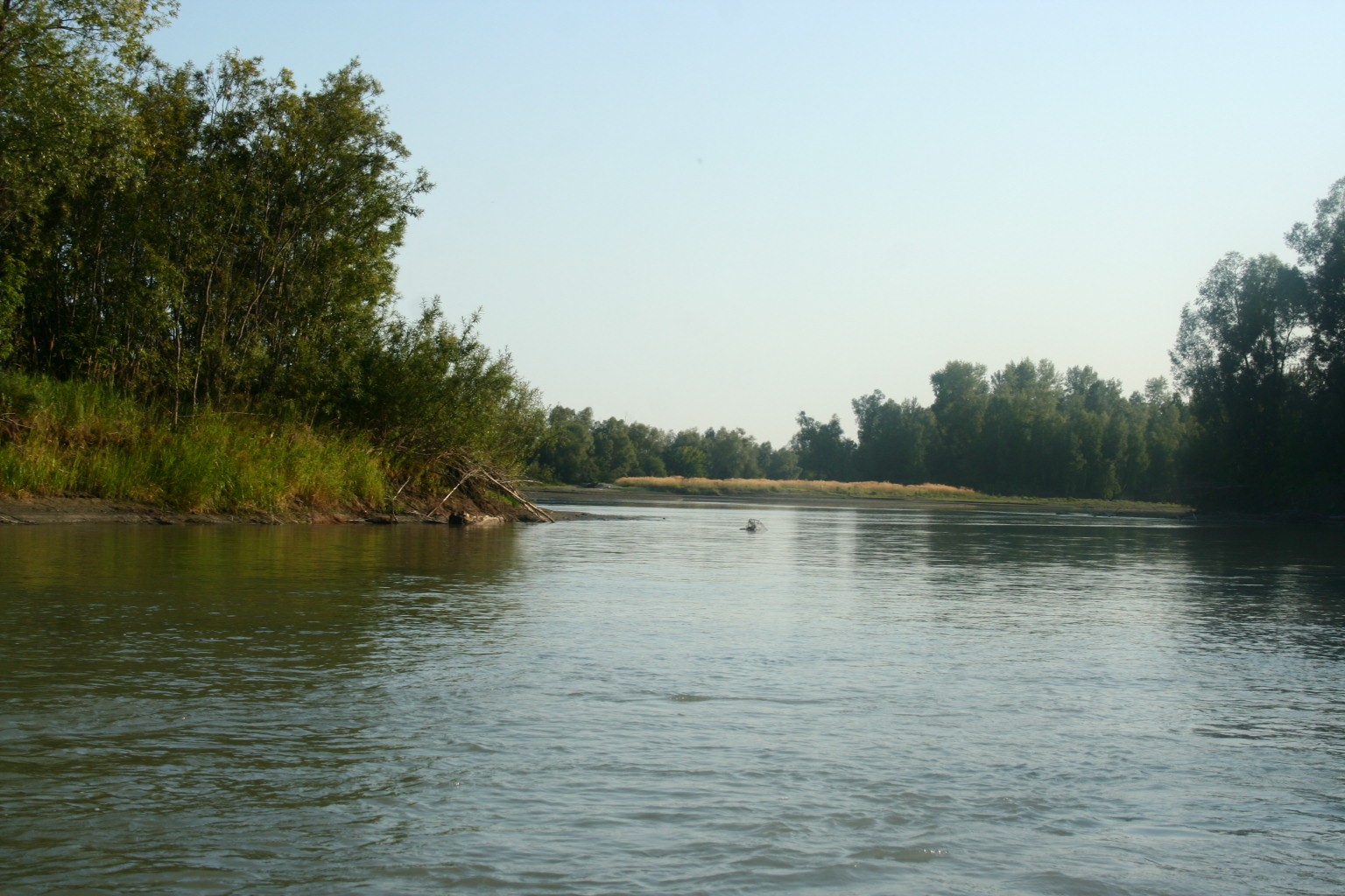 external image Armlet_distributary_of_Ob_river.jpg