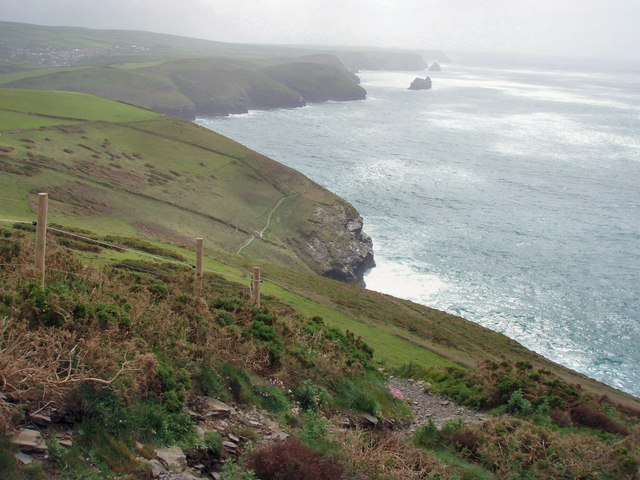 File:Beeny Cliff - geograph.org.uk - 437370.jpg