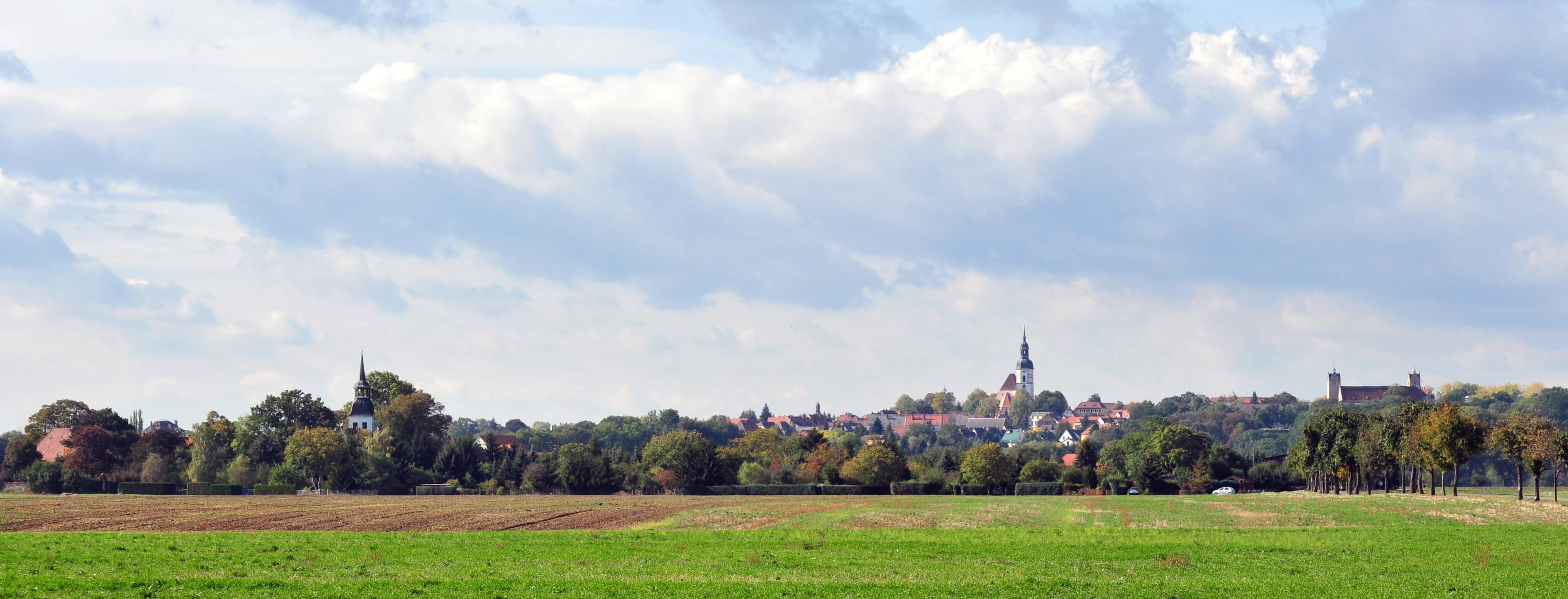 Blick auf Lorenzkirch und Strehla.jpg
